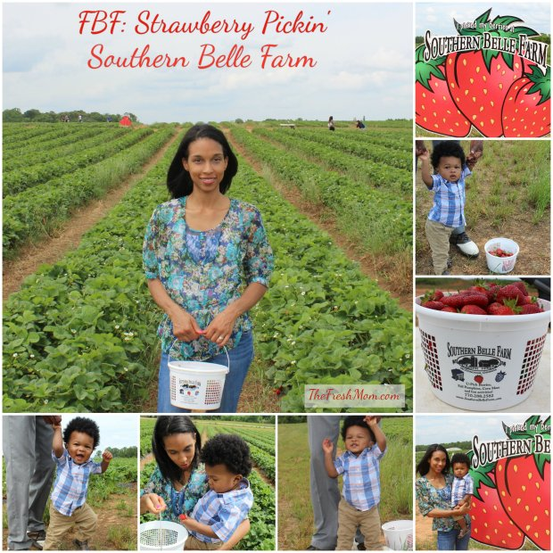 FBF- Strawberries