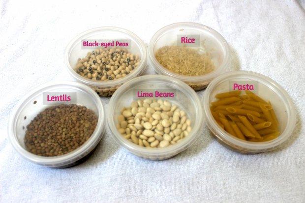 Veggie sorting 1