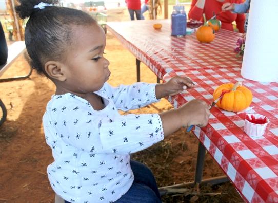 cadence-painting-pumpkin